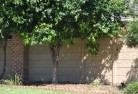 Abbotsford QLD Barrier wall fencing 5
