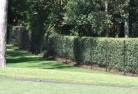 Abbotsford QLD Wire fencing 15